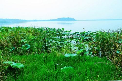 蔡甸后官湖绿道